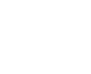 Palm Beaches Pledge Logo