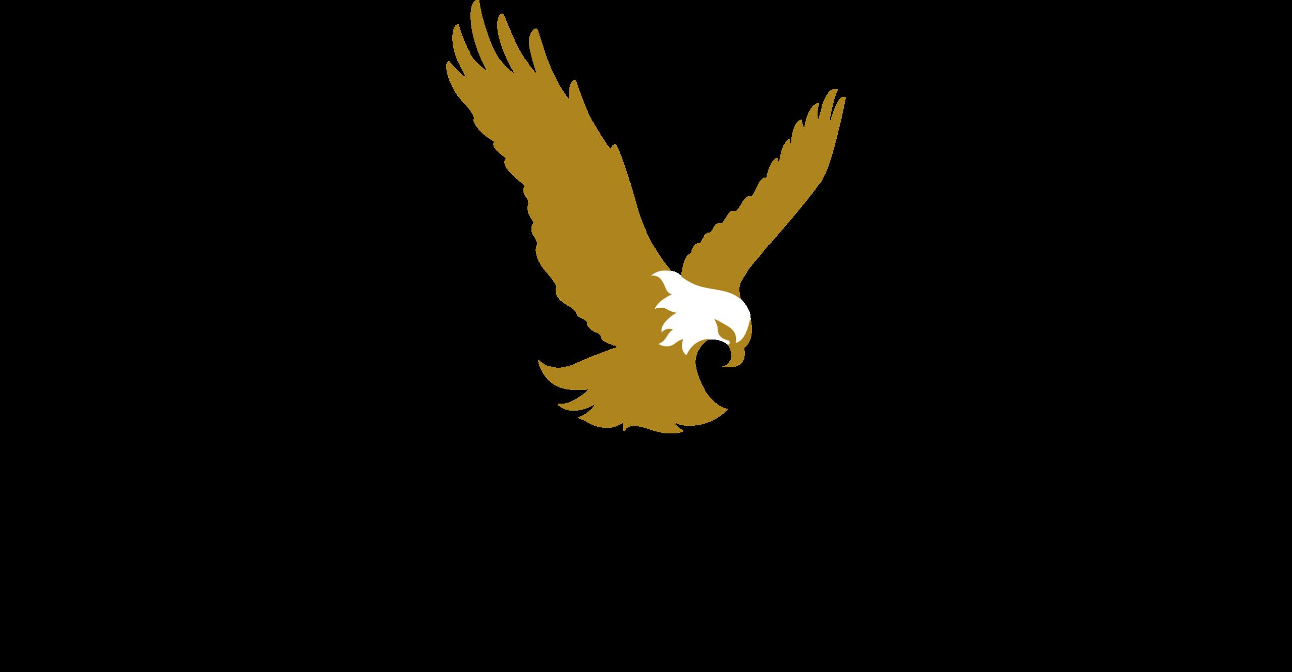bird flying. First Republic Logo.